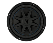 10 inch 2 ohm dual voice coil